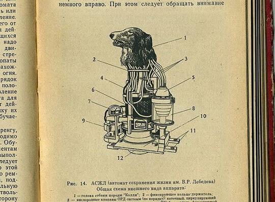 【衝撃】旧ソ連の極秘実験 犬の頭とロボットを組み合わせて兵器を開発する計画「The Kollie」