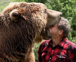 【衝撃映像】このスピードで熊が襲い掛かってきたら勝てる気しない・・・
