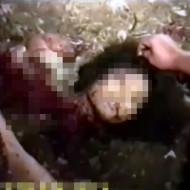 【鳥肌映像】行方不明の少女がバラバラの細切れ状態で発見される・・・