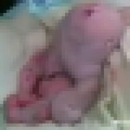 【グロ動画】生まれてきた赤ちゃんがトランスフォームして第2形態になってた・・・