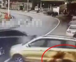 【事故死】車に轢かれてボディに血が飛び散る瞬間がトラウマレベル・・・ ※衝撃映像