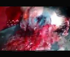 【女の子 死体】女の子がクパァ~してるだと!?行かなきゃ(使命感)結果→脳チラ少女発見!!! ※グロ動画