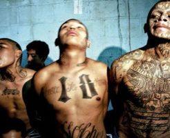 【カルテル】メキシコ麻薬戦争に巻き込まれた人達のグロ画像 燃やされたり斬首されたりと残酷過ぎるぜ・・・