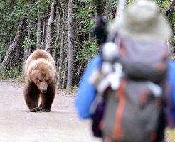 【グロ画像】野生のクマに襲われて生きたまま巣に連れ行かれ保存食にされた人・・・