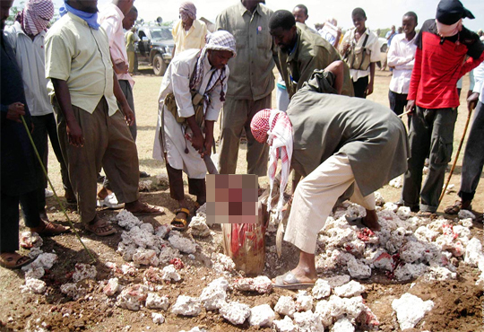 【グロ注意】スンニ派イスラム教徒ボコ·ハラムの罪人首切り映像…